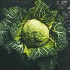 nährstoffreichstes Gemüse: Kohl